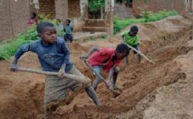Child Labour : A Threat To A Child's Success