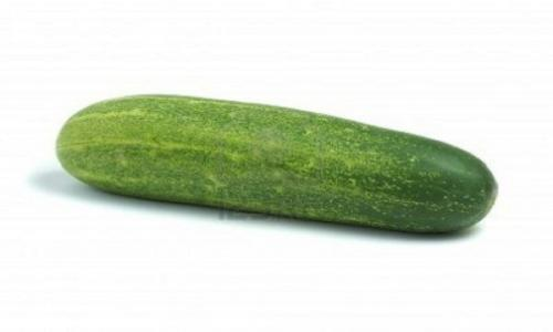 The Importance of Cucumber To Human Health