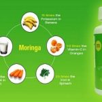 The Miraculous Works Moringa Plant