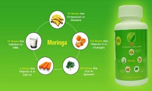The Miraculous Works of Moringa Oleifera Plant