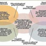 Difference Between Physical Science And Social Science