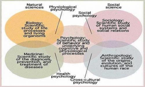 Understanding What Science Means (Physical Science Versus Social Science)